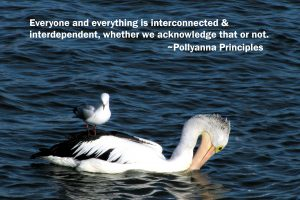 Everything and everyone is interconnected and interdependent